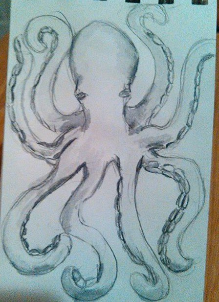 Octopus in Watercolor Graphite