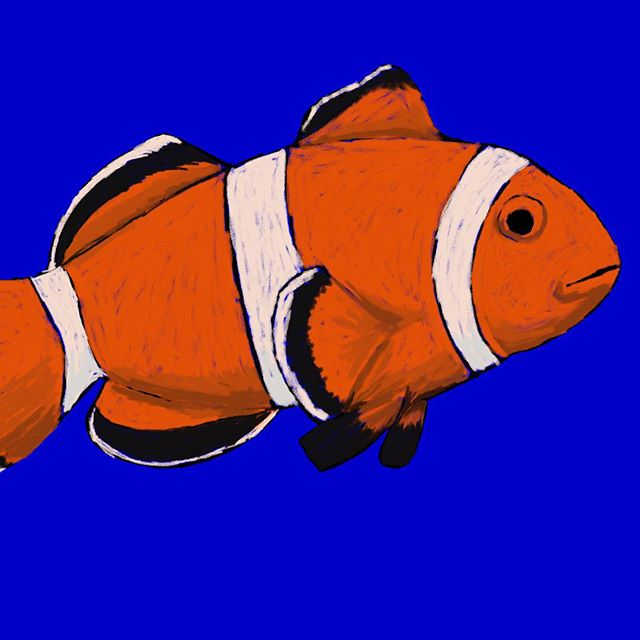Digitally Painted Clownfish