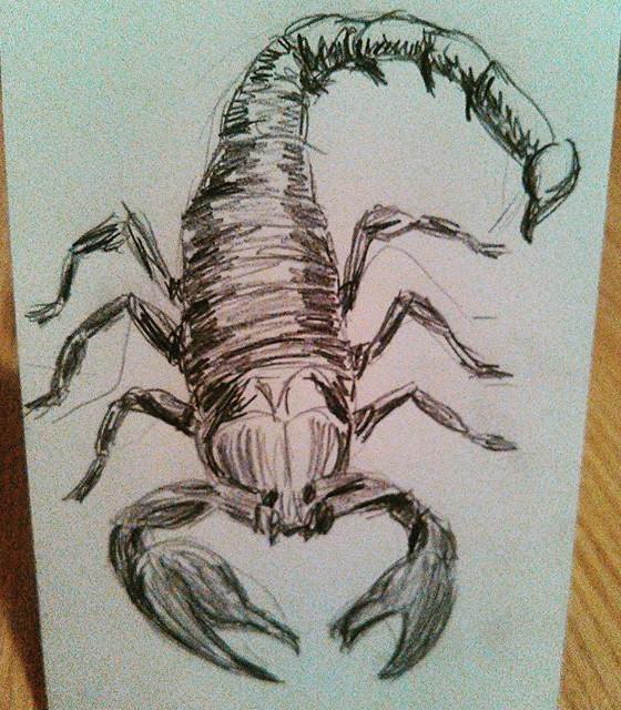 Scorpion #1
